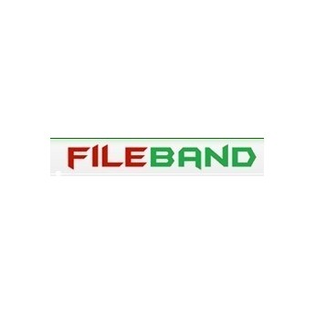 FileBand 160 Days Premium Account