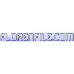 Florenfile.com 180 Days Premium Account