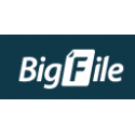 Bigfile.to 30 Days Premium Account