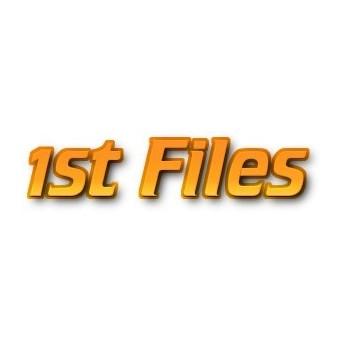 1st-Files 365 Days Premium Account