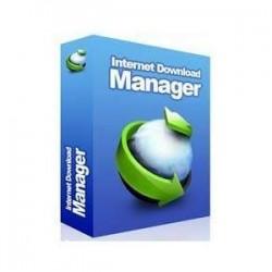 Internet Download Manager 10 Computer License